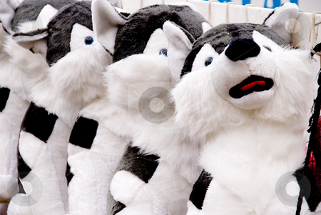 Stuffed Dog Toys stock photo, A row of stuffed dog animals at a carnival. by Robert Byron