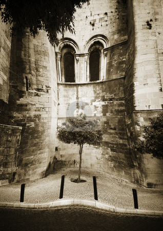 Surreality stock photo, A tree on a street scene warping inwards outside a Cathedral in Lisbon, Portugal. by Damian Keane
