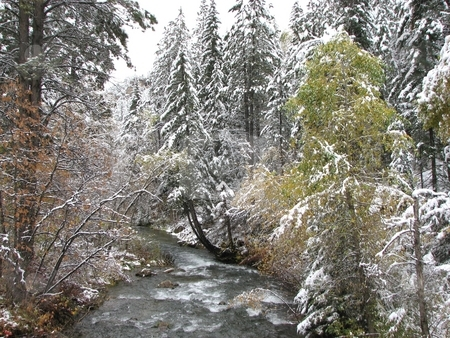 Spearfish Canyon Creek - Winter stock photo, Taken In Spearfish Canyon In South Dakota by Brian Meyer