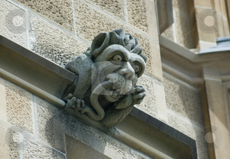 Gargoyle stock photo, Gargoyles stones on the side of the historic sydney university by Stephen Gibson