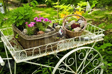 Flower cart in garden stock photo, Flower cart with two baskets in summer garden by Elena Elisseeva