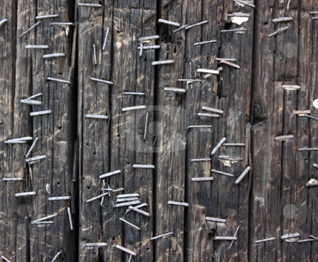 Wood with Staples stock photo, Texture of telephone pole with staples by Julie Bentz