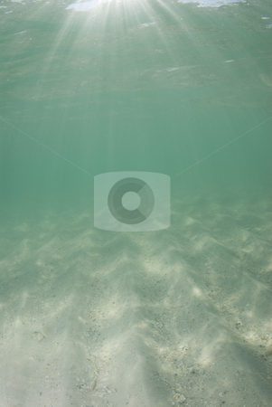 Underwater Beach Sunrays half sand stock photo, Underwater view of sunbeams stream through the surface of the ocean and dancing on the floor of the sea on a bright sunny day.  Bright sand with dramatic sunrays by A Cotton Photo