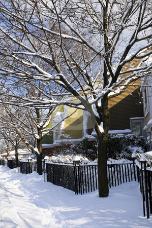 Winter street stock photo, Winter street with lots of snow and colorful houses in Toronto by Elena Elisseeva
