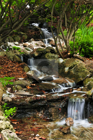 Creek with waterfalls stock photo, Creek with small waterfalls in japanese zen garden by Elena Elisseeva