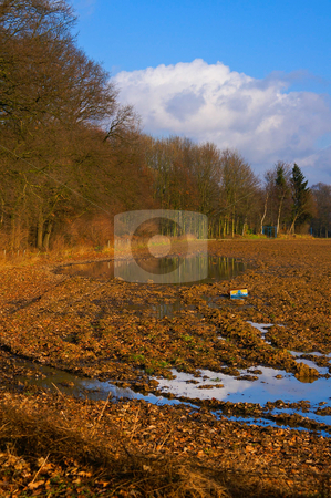 Autumn acre  stock photo, Acre with nice bright autumn colors by Karin Claus