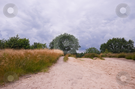 Sandy road stock photo, Sand path in a rural environment with dark rain clouds by Karin Claus