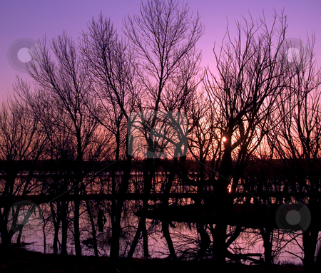 Flood Abstract with Purple Sunset stock photo, Sunset on the flood of the James river in South Dakota by John McLaird