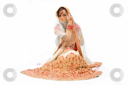 Harem girl stock photo, Beautiful harem girl or belly dancer or Hindu bride sitting, isolated by Paul Hakimata