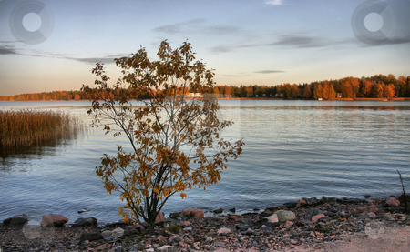 Beach stock photo, Autumn feeling by Arve Bettum