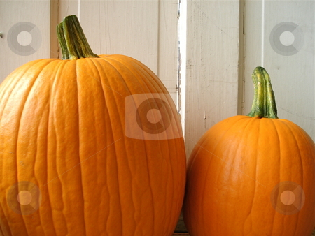 Teo Pumpkins stock photo, Two Pumpkins sitting outside near a white exterior wall. by Ben O'Neal