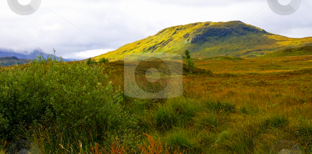 Colorful mountain scape  stock photo, Colorful mountain scape covered with autumn colored vegetation by Karin Claus