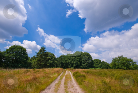 Sandy road   stock photo, Sand path in a rural environment with cloudy blue sky by Karin Claus