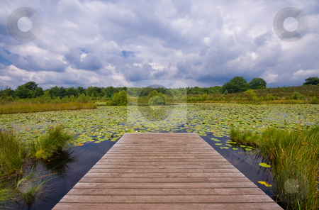 Stormy clouds stock photo, Pier on a lake covered with water lilies and stormy clouds in the back by Karin Claus