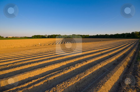 Rural farmland stock photo, Farmlandscape with lines and paterns in the eart from a plough by Karin Claus