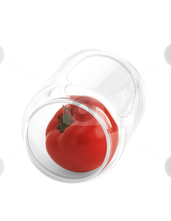 Tomato on a jar stock photo, Tomato in a glass jar isolated on white background by Francesco Perre