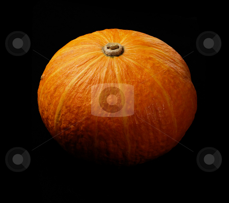 Pumpkin stock photo, Fresh deep vivid yellow pumkin  on black background by Francesco Perre
