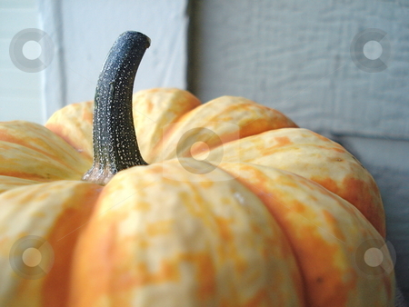 Pumpkin next to White Wall stock photo, A pumpkin sits next to a white exterior wall. by Ben O'Neal