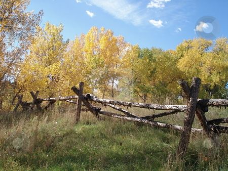 Fall Foliage and Wooden Fence stock photo, An old wooden fence in a field with trees changing color in Colorado in the fall. by Ben O'Neal