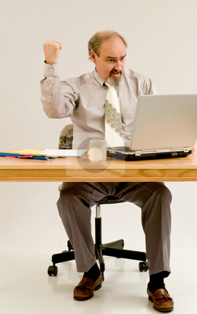 Businessman celebrates stock photo, A businessman likes the quarterly figures on his laptop by RCarner Photography