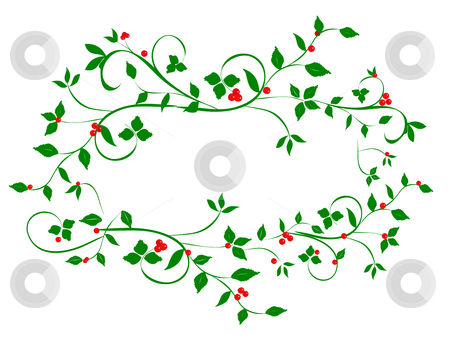 Holly Heart Wreath stock photo, Holly vines with red berries in the shape of a heart wreth.  Illustrated on white background. by Teri Francis Mazzafro