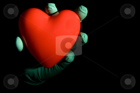Heart stock photo, A medical professional holding a red heart. by Robert Byron