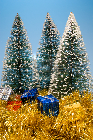 Christmas Presents stock photo, Holiday Christmas presents under evergreen pine trees. by Robert Byron