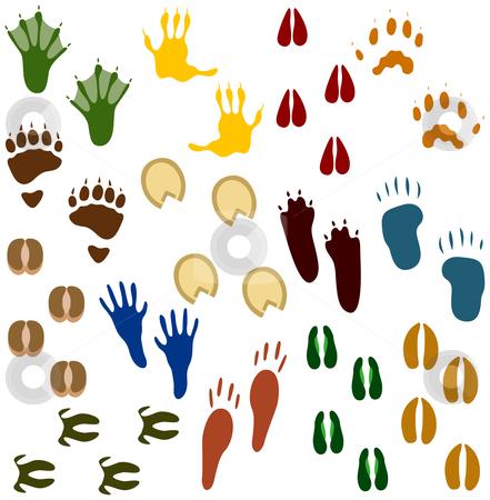 Fourteen Sets of Animal Tracks stock vector clipart, Fourteen Sets of Animal Tracks by Adrian Sawvel