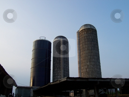 Three Silos On a Dairy Farm in Tennessee stock photo, Two concrete silos and one metal silo on a dairy farm in Tennessee by Krystal McCammon