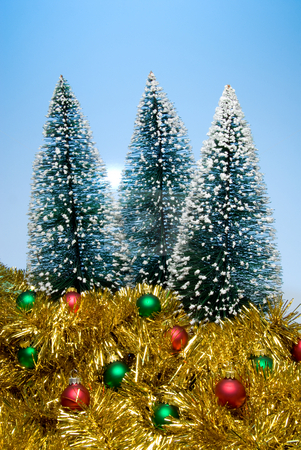 Christmas Trees stock photo, Christmas trees covered in snow surrounded by garland and ornaments. by Robert Byron