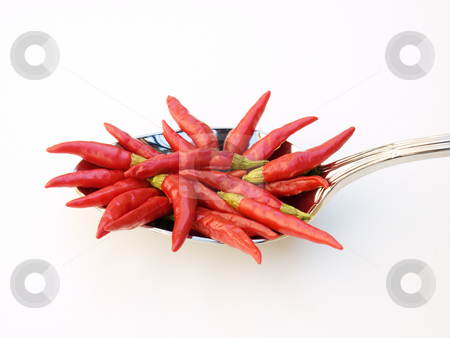 Devil's meal stock photo, Red chili in the silver spoon on a clear background. by Sinisa Botas