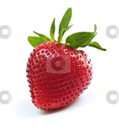 Strawberry on white background stock photo, Single fresh strawberry isolated on white background by Elena Elisseeva