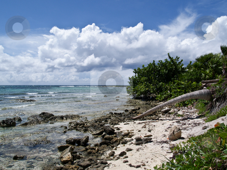 Rocky Caribbean Shore stock photo, Blue sky, blue water, sunlit white clouds, surf and sand by Gary W. Sherwin