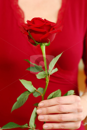 Woman rose stock photo, Woman in red holding a red rose by Elena Elisseeva