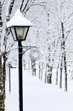 Winter park stock photo, Winter park covered with fresh white snow by Elena Elisseeva