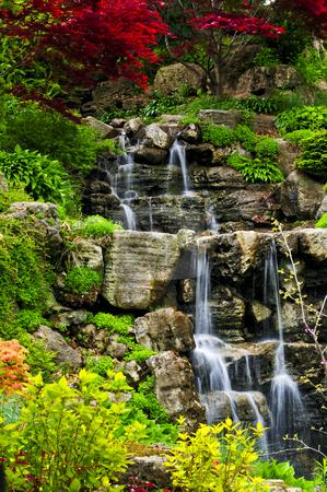 Cascading waterfall stock photo, Cascading waterfall in japanese garden in springtime by Elena Elisseeva