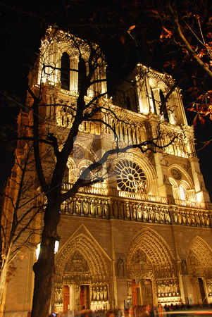 Notre Dame de Paris stock photo, Cathedral of Notre Dame de Paris at night by Elena Elisseeva