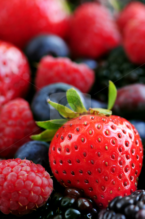 Assorted fresh berries stock photo, Background of assorted fresh berries close up by Elena Elisseeva