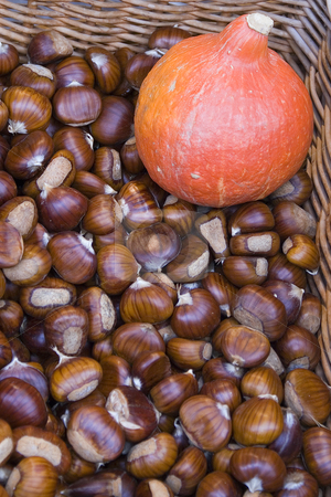 Autumn stock photo, Basket full of chestnut with an orange squash. (autumn in a French Riviera market) by Serge VILLA
