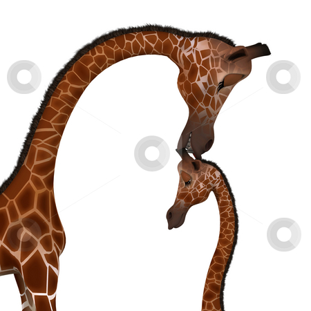 Cute giraffe with a funny face - lovely stock photo, Rendered Image of a really cute animal Image contains a Clipping Path by Ralf Kraft