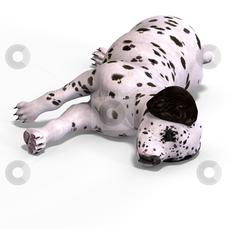Cute puppy dalmation stock photo, Very cute young dog over white with Clipping Path by Ralf Kraft