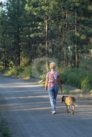 Woman And Her Dog stock photo, Woman And Her Dog Walking Down A Rural Road by Mallorey Orcutt
