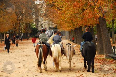 Jardins du Luxembourg stock photo, Children riding ponies in Jardins du Luxembourg (Luxembourg gardens) in Paris France by Elena Elisseeva
