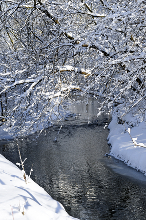 Winter landscape stock photo, Winter landscape with snow covered trees and river by Elena Elisseeva