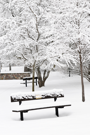 Winter park stock photo, Winter park landscape with bench under the snow by Elena Elisseeva