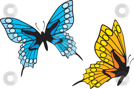 Butterflies stock vector clipart, Two colorful butterflies isolated on white background by Oxygen64