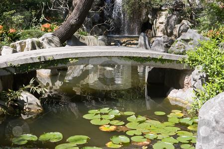 Bridge and Waterfall stock photo, A chinese garden with bridge and waterfall by Nicholas Rjabow