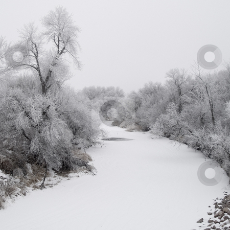 Winter Creek stock photo, Frosted creek on a foggy December morning in South Dakota by John McLaird