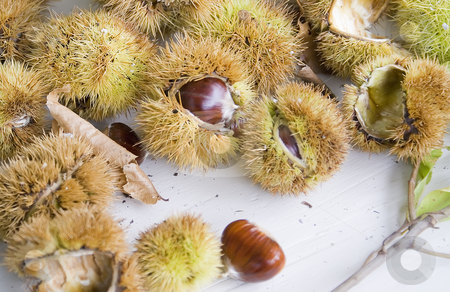 Chestnuts stock photo, Chestnuts in a Provencal market in Autumn (French Riviera) by Serge VILLA