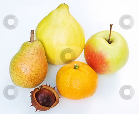 Seasonal Fruits stock photo, Part of Autumn's portfolio of fruit on the clear background. by Sinisa Botas